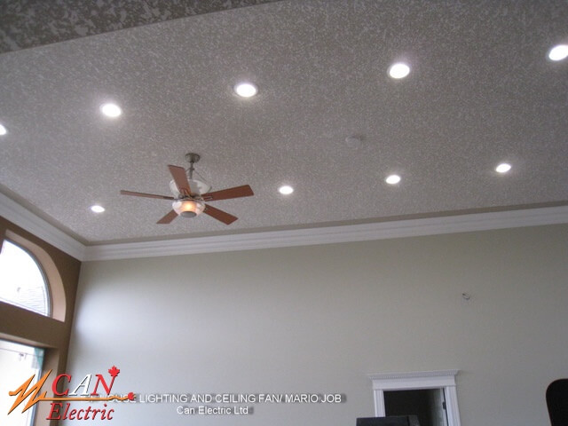 house lighting & ceiling fan